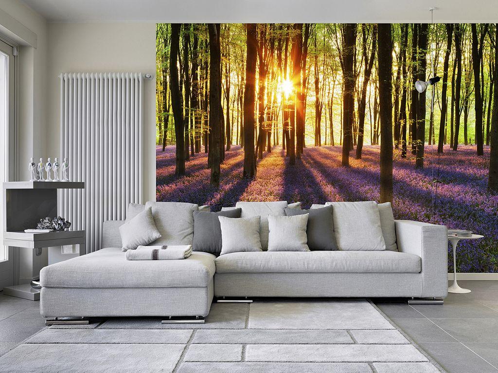 Картинки с природой в лесу